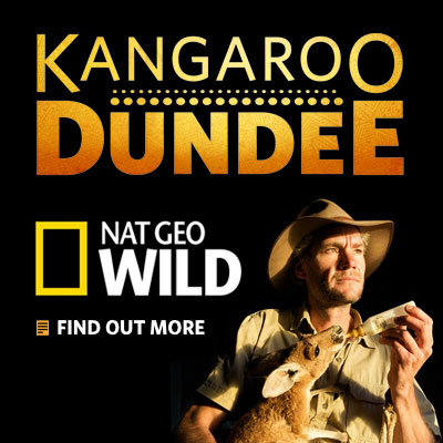 Brolga in Kangaroo Dundee on Nat Geo Wild