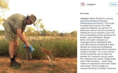Kangaroo Sanctuary on Instagram's Instagram!