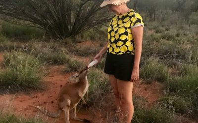 Starstruck! Meeting Kangaroo Dundee and his Kangaroos